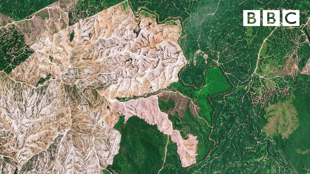 VIDEO. Ces images satellites de Madagascar montrent les effets de la déforestation massive