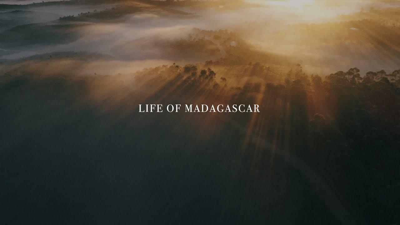 VIDEO. «Life of Madagascar», une vidéo qui dégage un maximum d'émotion